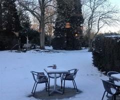 sneeuw bij Fieneke